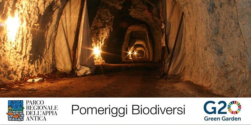 G20 Green Garden - Le cave romane della Caffarella - sabato 3 luglio 2021